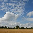 End of summer in village by Antanas
