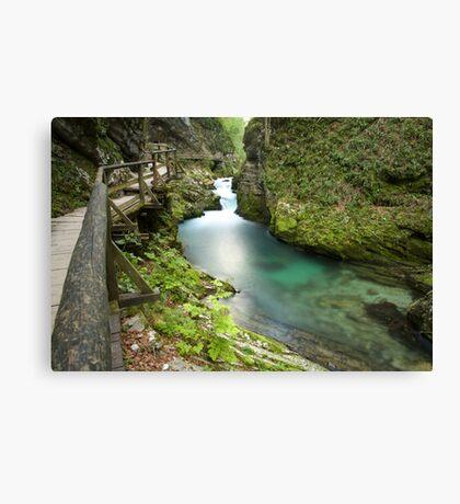 The Soteska Vintgar gorge Canvas Print