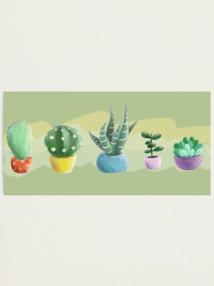 Alternate view of cute cacti Photographic Print