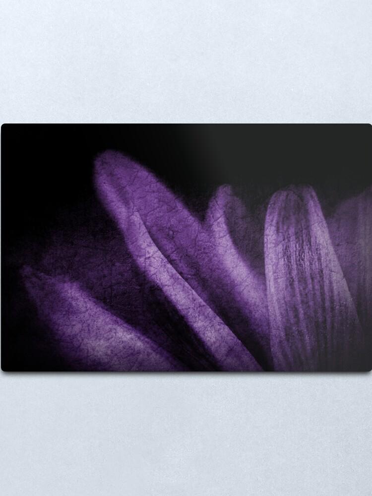 Alternate view of Abstract Petals in Purple Grunge Metal Print