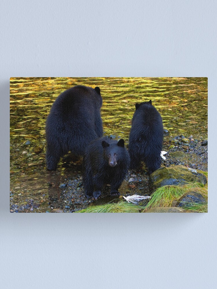 """Alternate view of """"Hey mom, someone's taking our photograph!"""" Canvas Print"""