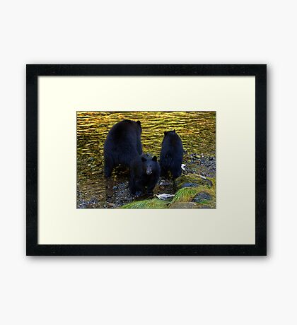 """""""Hey mom, someone's taking our photograph!"""" Framed Print"""