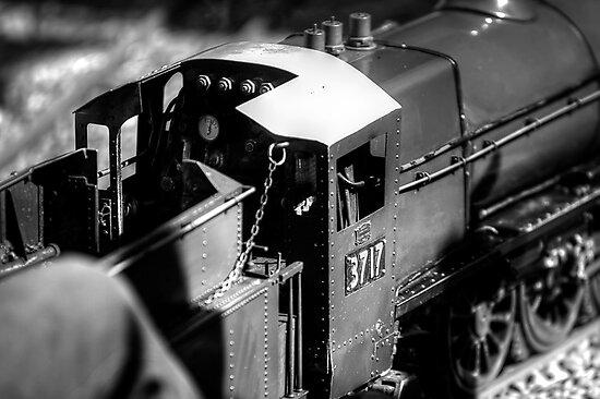 Miniature Steam Train by Mark  Lucey
