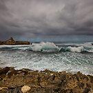 Cape Mentelle Western Australia by Chris Paddick