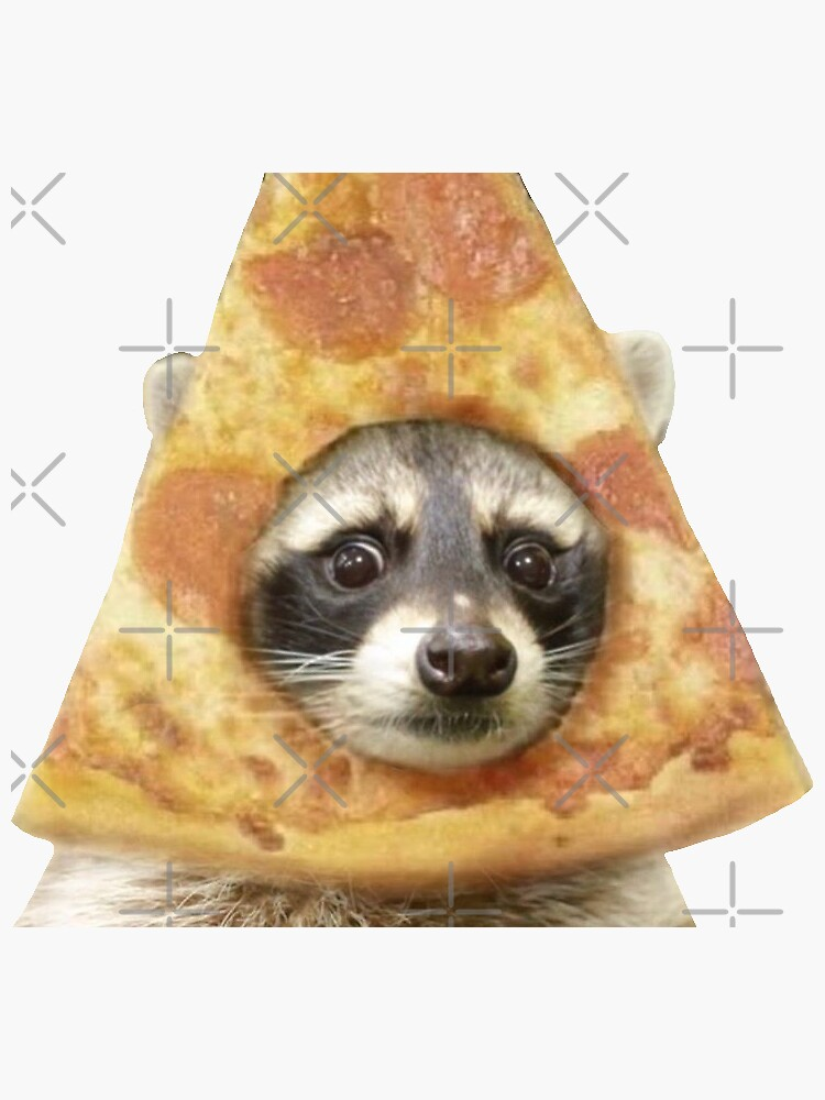 pizza raccoon by artist-toes