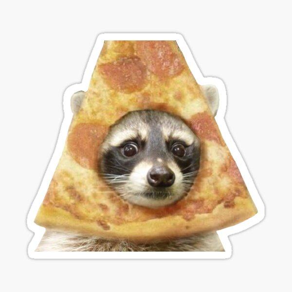 pizza raccoon Sticker