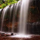 Osceola Falls memories by Angela King-Jones