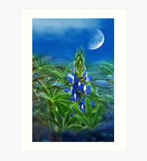 """""""Wild Lupin"""" Art Print"""