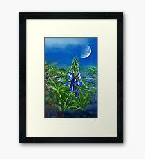 """Wild Lupin"" Framed Print"