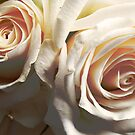 Flowers of White by lissygrace