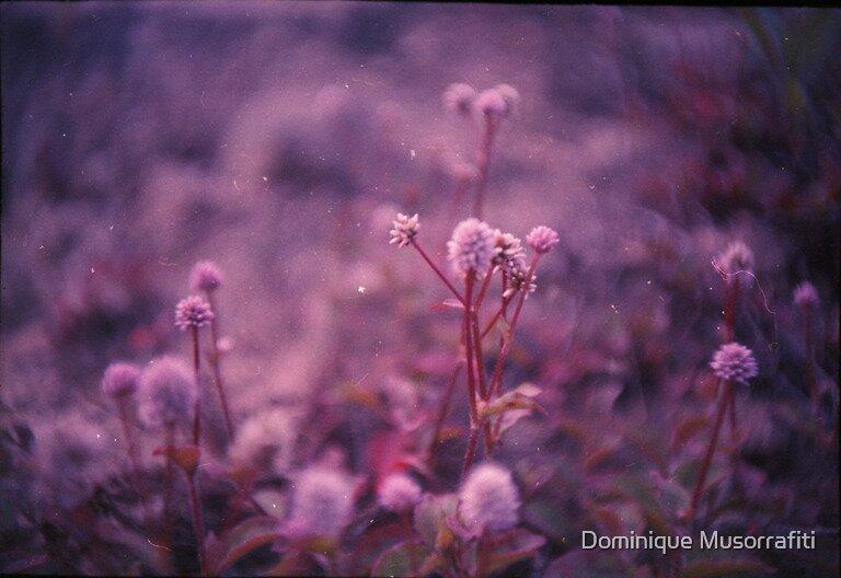 A Pink Natural Wonderland by Dominique Musorrafiti