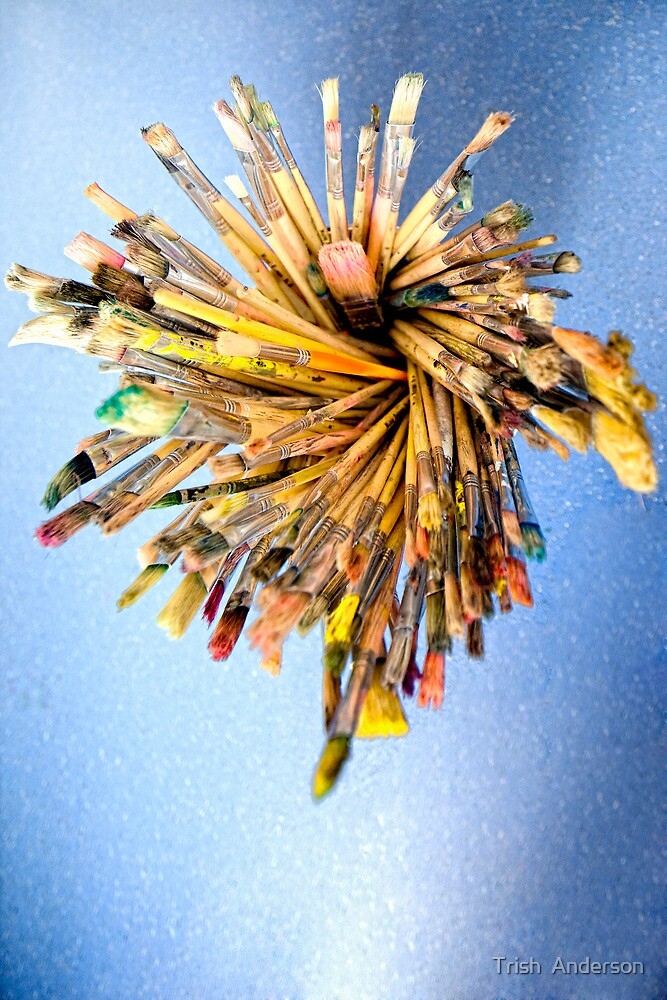 Is this the brush off? by Trish  Anderson