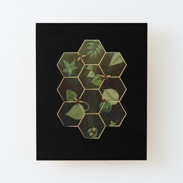Bees in Space  Wood Mounted Print
