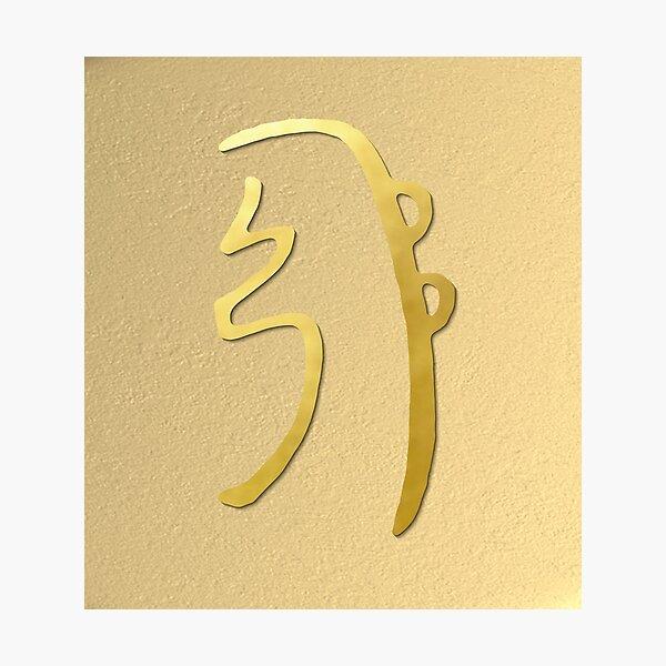 SEI HEI KI The Harmony Symbol gold spiritual element Photographic Print