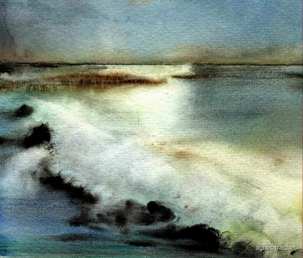 sea by agnès trachet