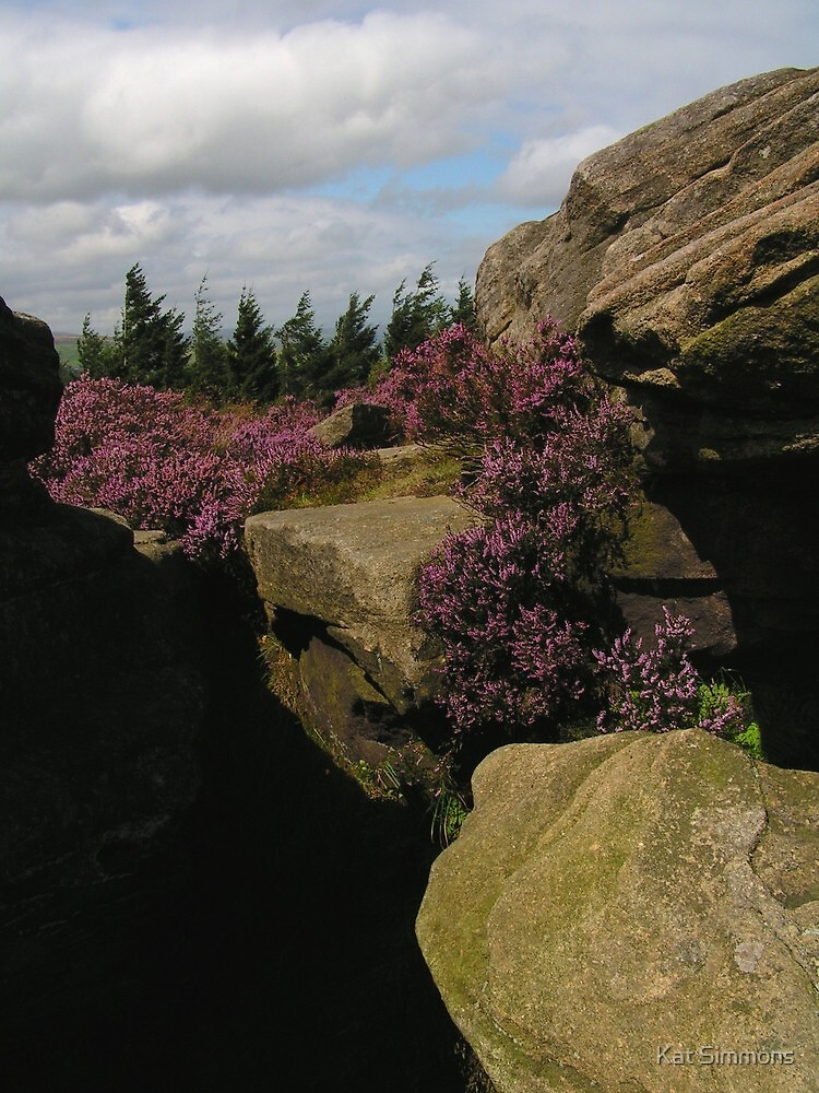 Rock and Heather by Kat Simmons