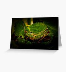 Hopper - Grasshopper Greeting Card
