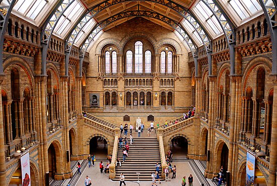 Natural History Museum by Chris Vincent