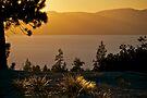 Last Light over Lake Tahoe by Helen Vercoe