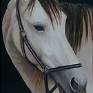 Horse portrait by Charlotte Yealey
