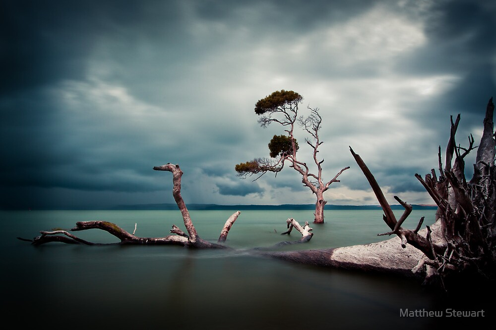 Lonesome (Moreton Bay, Queensland) by Matthew Stewart