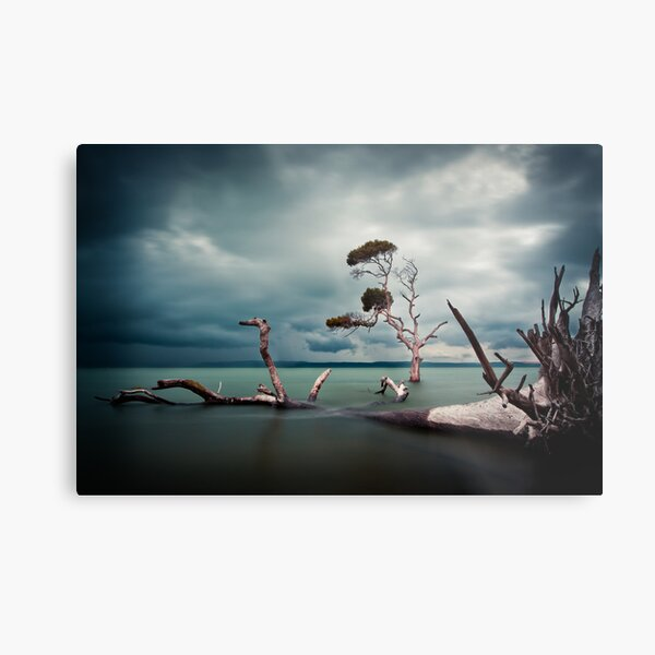 Lonesome (Moreton Bay, Queensland) Metal Print