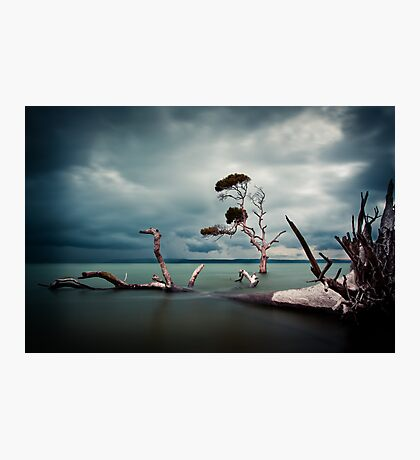 Lonesome (Moreton Bay, Queensland) Photographic Print