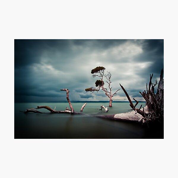 Lonesome (Moreton Bay, Queensland) Photographic Print