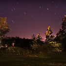 Stars by Conor  O'Neill