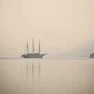 Sailing by Milos Markovic