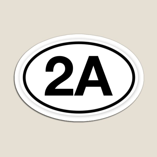 2A Oval Magnet