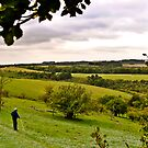 Walking in Fields of Dreams by robbtate