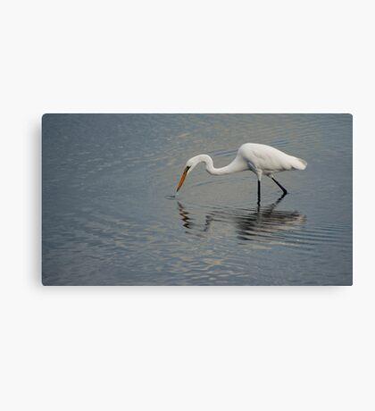 Fisherbird - white egret Canvas Print