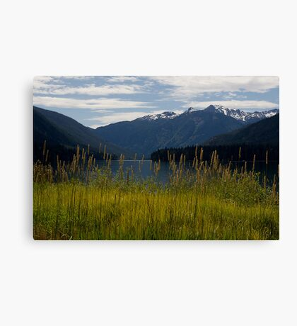 Birkenhead Lake Canvas Print