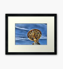 Star Mapping Framed Print