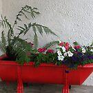 Red Bath Tub by Margaret Stevens