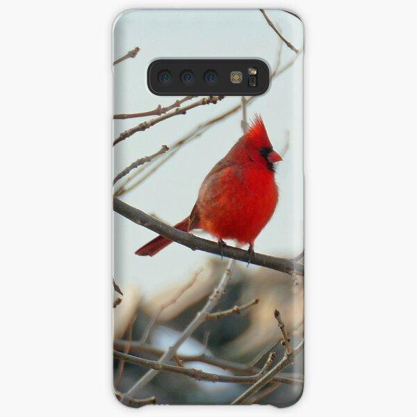 Beautiful Cardinal Samsung Galaxy Snap Case