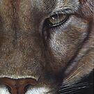 Cougar face by artbyakiko