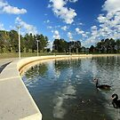 Emu Inlet, Lake Ginninderra by buildings