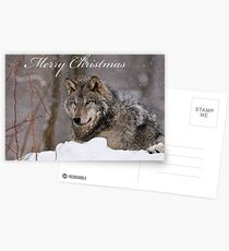 Christmas Card - Timber Wolf  Postcards