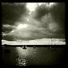 Burnham Overy Staithe  at high tide, Norfolk, UK by Richard Flint