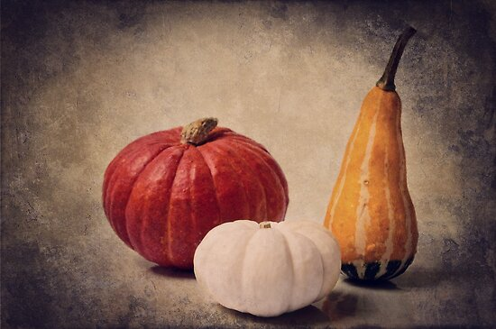 Three pumpkins by Angela Dölling