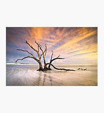 The Calm - Folly Beach at Sunset - Charleston, SC, USA Photographic Print