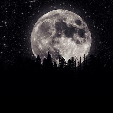 Midnight Horizon by illumistration