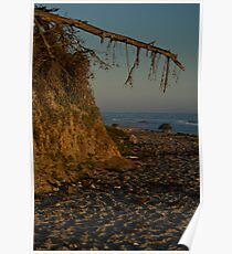 fey santa barbara sunset Poster
