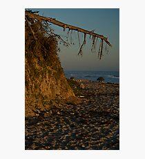 fey santa barbara sunset Photographic Print