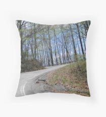 Winding Roads Throw Pillow