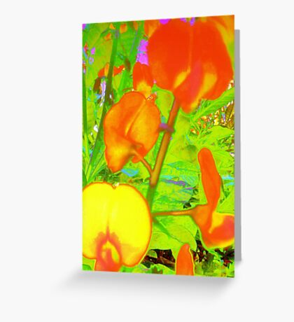 Colorful snapdragons Greeting Card