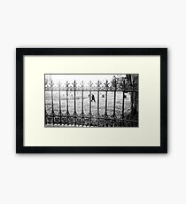 Life marching on .... but we still remember Framed Print