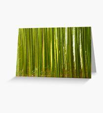 Nature bamboo abstract Greeting Card